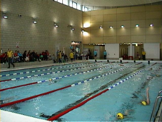Bushey Amateur Swimming Club Watford Herts Uk